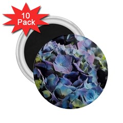 Blue And Purple Hydrangea Group 2 25  Button Magnet (10 Pack) by bloomingvinedesign