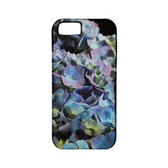 Blue And Purple Hydrangea Group Apple Iphone 5 Classic Hardshell Case (pc+silicone) by bloomingvinedesign
