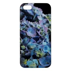 Blue And Purple Hydrangea Group Apple Iphone 5 Premium Hardshell Case by bloomingvinedesign