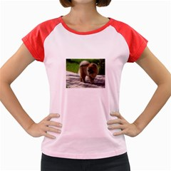 Chow Chow Full Women s Cap Sleeve T-Shirt (Colored) by TailWags