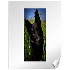 Black German Shepherd Canvas 12  x 16  (Unframed) by TailWags