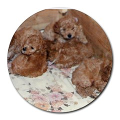 Apricot Poodle Pups 8  Mouse Pad (Round) by TailWags