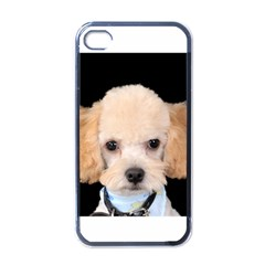 Apricot Poodle Apple iPhone 4 Case (Black) by TailWags