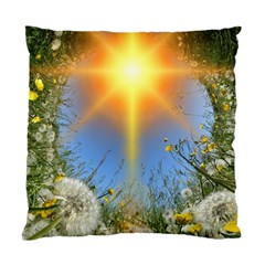 Dandelions Cushion Case (two Sided)  by boho