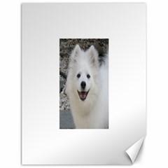 American Eskimo Dog Canvas 12  x 16  (Unframed) by TailWags