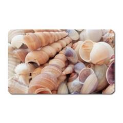Seashells 3000 4000 Magnet (rectangular) by yoursparklingshop