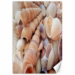 Seashells 3000 4000 Canvas 12  X 18  (unframed) by yoursparklingshop