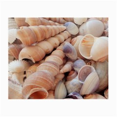 Seashells 3000 4000 Glasses Cloth (small, Two Sided) by yoursparklingshop