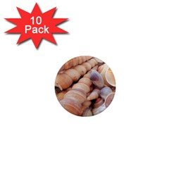 Sea Shells 1  Mini Button Magnet (10 Pack) by yoursparklingshop