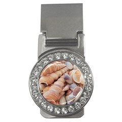 Sea Shells Money Clip (cz) by yoursparklingshop