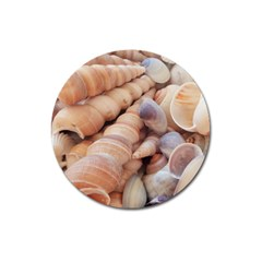 Sea Shells Magnet 3  (round) by yoursparklingshop