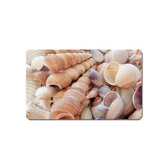 Sea Shells Magnet (name Card) by yoursparklingshop