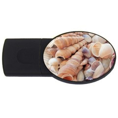 Sea Shells 2gb Usb Flash Drive (oval) by yoursparklingshop