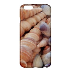 Sea Shells Apple iPhone 6 Plus Hardshell Case by yoursparklingshop