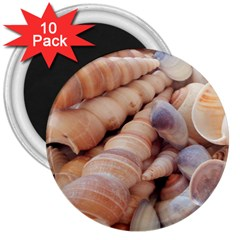 Sea Shells 3  Button Magnet (10 Pack) by yoursparklingshop