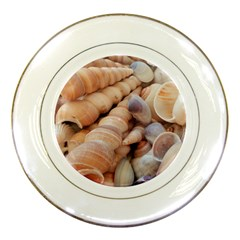 Sea Shells Porcelain Display Plate by yoursparklingshop