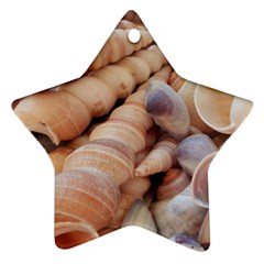 Sea Shells Star Ornament (two Sides) by yoursparklingshop