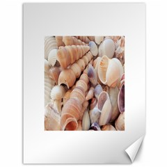 Sea Shells Canvas 36  X 48  (unframed) by yoursparklingshop