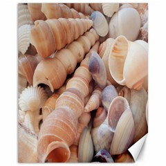 Sea Shells Canvas 11  X 14  (unframed) by yoursparklingshop