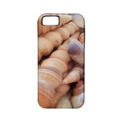 Sea Shells Apple Iphone 5 Classic Hardshell Case (pc+silicone) by yoursparklingshop
