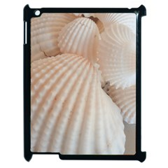 Sunny White Seashells Apple Ipad 2 Case (black) by yoursparklingshop