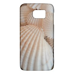 Sunny White Seashells Samsung Galaxy S6 Hardshell Case  by yoursparklingshop