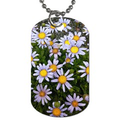 Yellow White Daisy Flowers Dog Tag (one Sided) by yoursparklingshop