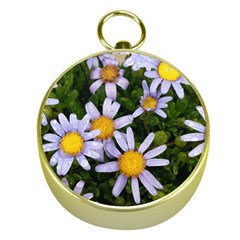 Yellow White Daisy Flowers Gold Compass by yoursparklingshop