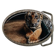 Photo  Belt Buckle (Oval) by things9things