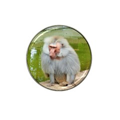 Grey Monkey Macaque Golf Ball Marker 4 Pack (for Hat Clip) by yoursparklingshop