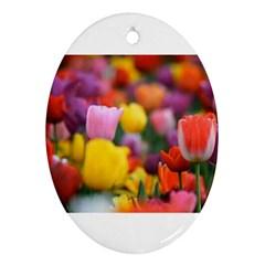 Flower Oval Ornament (two Sides) by habiba4true