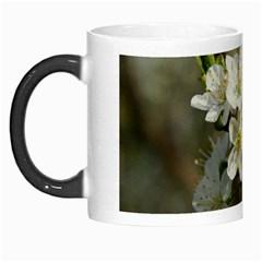 Spring Flowers Morph Mug by anstey