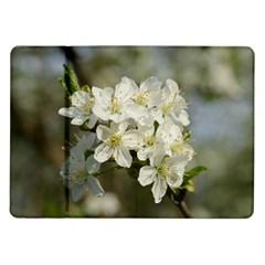 Spring Flowers Samsung Galaxy Tab 10 1  P7500 Flip Case by anstey