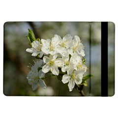 Spring Flowers Apple Ipad Air Flip Case by anstey