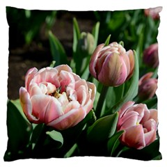 Tulips Large Flano Cushion Case (two Sides) by anstey