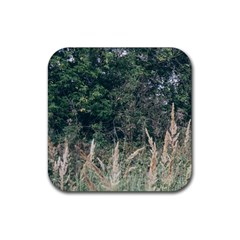 Grass And Trees Nature Pattern Drink Coaster (square) by ansteybeta