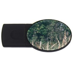 Grass And Trees Nature Pattern 2gb Usb Flash Drive (oval) by ansteybeta