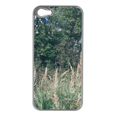 Grass And Trees Nature Pattern Apple Iphone 5 Case (silver) by ansteybeta
