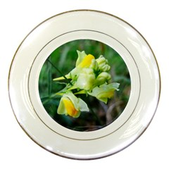 Linaria Flower Porcelain Display Plate by ansteybeta