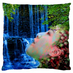 Fountain Of Youth Large Flano Cushion Case (two Sides)