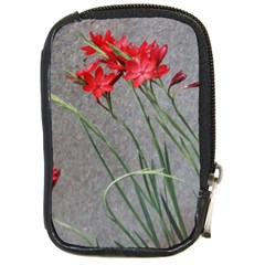 Red Flowers Compact Camera Cases by DeneWestUK