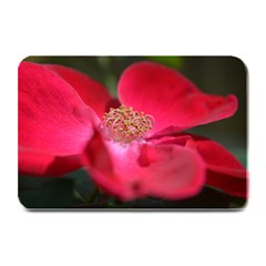 Bright Red Rose Plate Mats by timelessartoncanvas