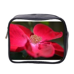 Bright Red Rose Mini Toiletries Bag 2 Side by timelessartoncanvas