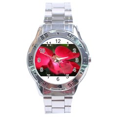 Bright Red Rose Stainless Steel Men s Watch by timelessartoncanvas