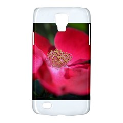 Bright Red Rose Galaxy S4 Active by timelessartoncanvas