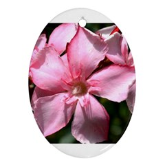 Pink Oleander Ornament (oval)  by timelessartoncanvas