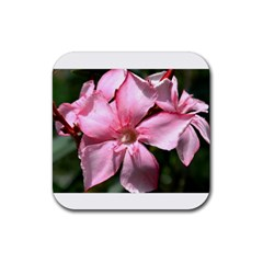 Pink Oleander Rubber Coaster (square)  by timelessartoncanvas