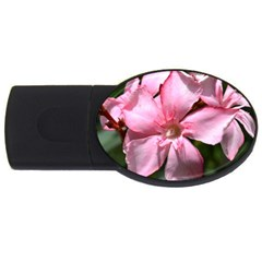 Pink Oleander Usb Flash Drive Oval (2 Gb)  by timelessartoncanvas