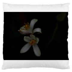 Lemon Blossom Large Cushion Cases (one Side)  by timelessartoncanvas