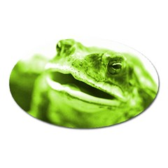 Green Frog Oval Magnet by timelessartoncanvas